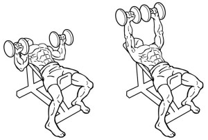 Dumbbell-Incline-Bench-Press