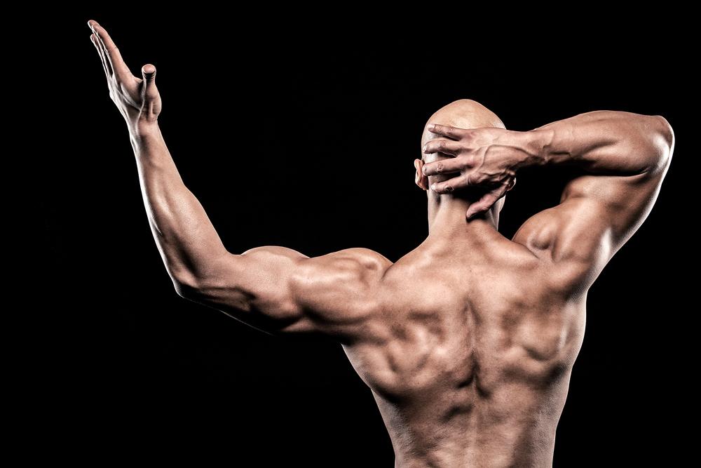 http://www.gymbeginner.hk/wp-content/uploads/2014/05/Male-Bodybuilder.jpg