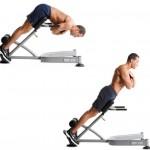 Back Extension 背部伸展訓練