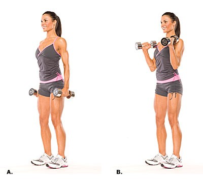 http://www.gymbeginner.hk/wp-content/uploads/2014/05/hammer-curl-e1399873606936.jpg
