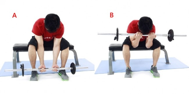 seated_close-grip_concentration_barbell_curl full