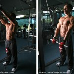 http://www.gymbeginner.hk/wp-content/uploads/2014/05/straight_arm_pull_down-150x150.jpg