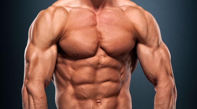 http://www.gymbeginner.hk/wp-content/uploads/2014/09/build-muscle.jpg