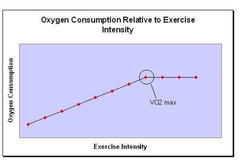 vo2max_graph