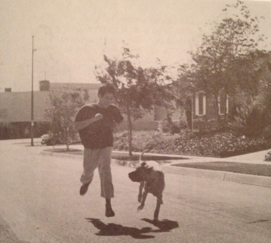 Bruce-Lee-Dog-Run