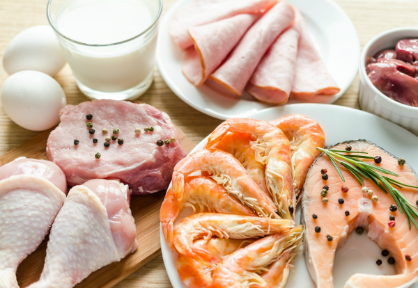 The-Importance-of-Protein-in-Your-Abs-Diet