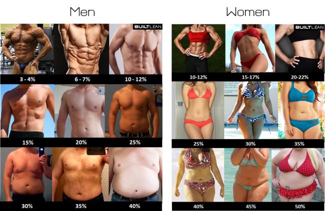 http://www.gymbeginner.hk/wp-content/uploads/2014/11/body-fat-percentage-men-women-e1415511423872.png