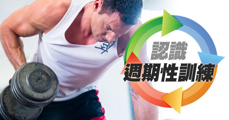 http://www.gymbeginner.hk/wp-content/uploads/2015/06/20150528_認識週期性訓練_v2.jpg