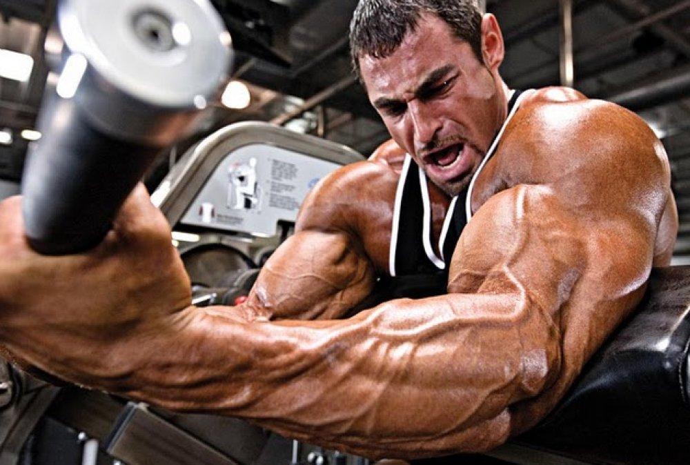 Bodybuilding-Pictures-2