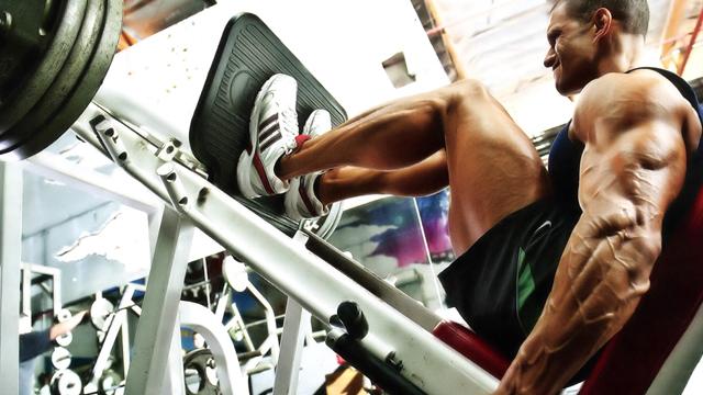 http://www.gymbeginner.hk/wp-content/uploads/2015/07/leg-press.jpg
