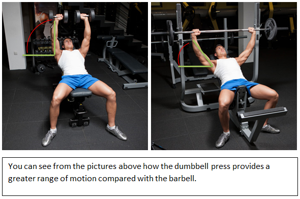 barbell-and-dumbbell-range-of-motion