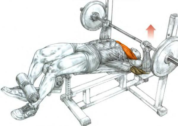 bench-press-muscles
