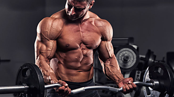 How-to-Increase-Cell-Volume-for-Fast-Muscle-Growth (1)
