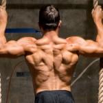 街頭健身:背肌訓練6式