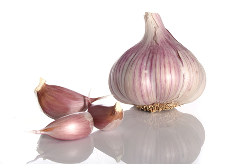 Aged-garlic-reduces-cold-and-flu-severity-RCT-data