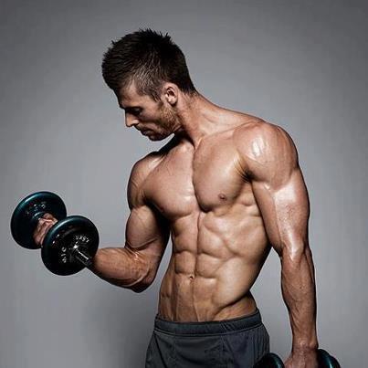 http://www.gymbeginner.hk/wp-content/uploads/2016/02/Muscle-Mass.png
