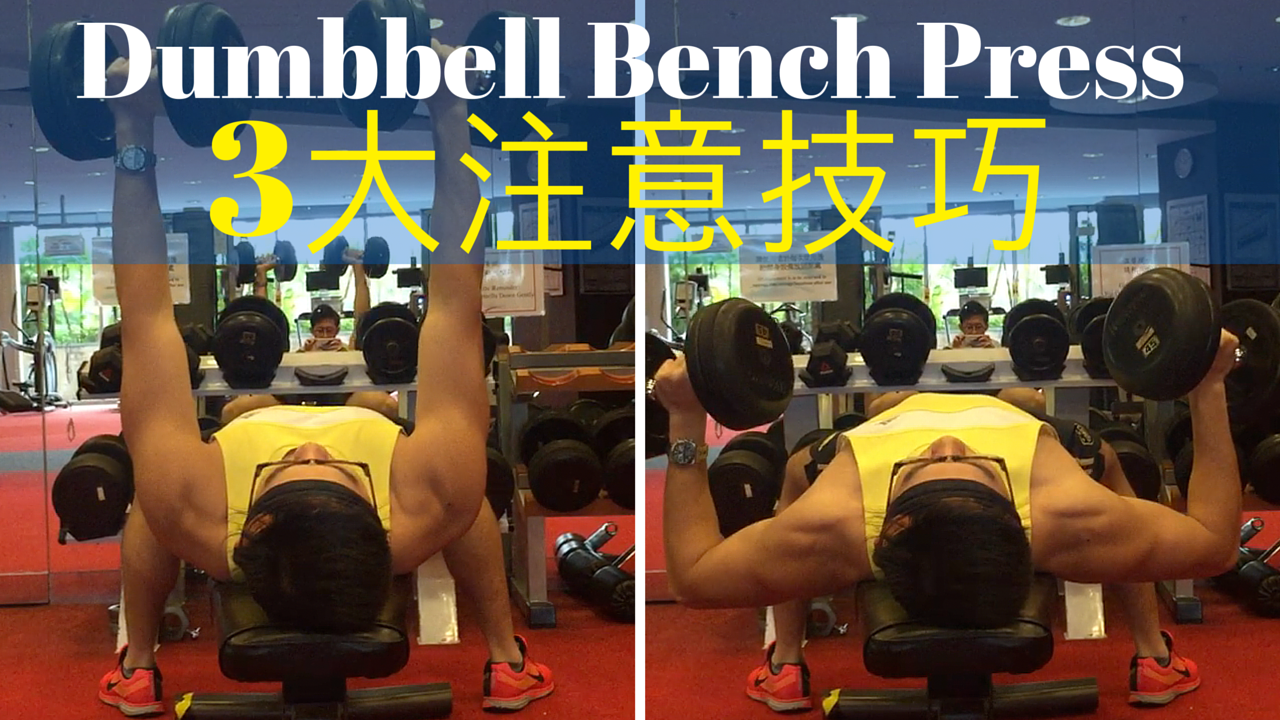 http://www.gymbeginner.hk/wp-content/uploads/2016/03/Dumbbell-Bench-Press-3大注意技巧1.png