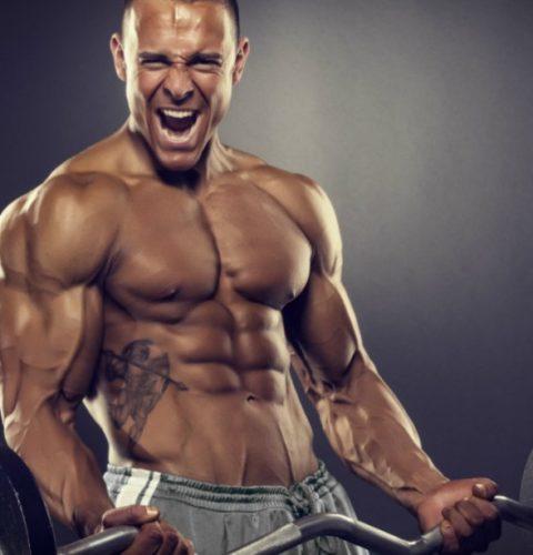 biceps-curl-9-ways-prime-pump