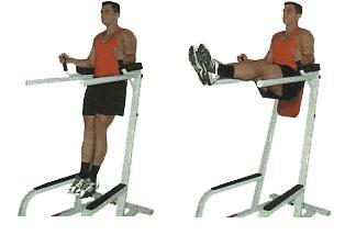 http://www.gymbeginner.hk/wp-content/uploads/2016/12/vertical-leg-raise.jpg