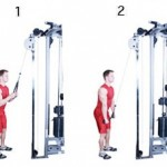 cable_triceps_pushdown
