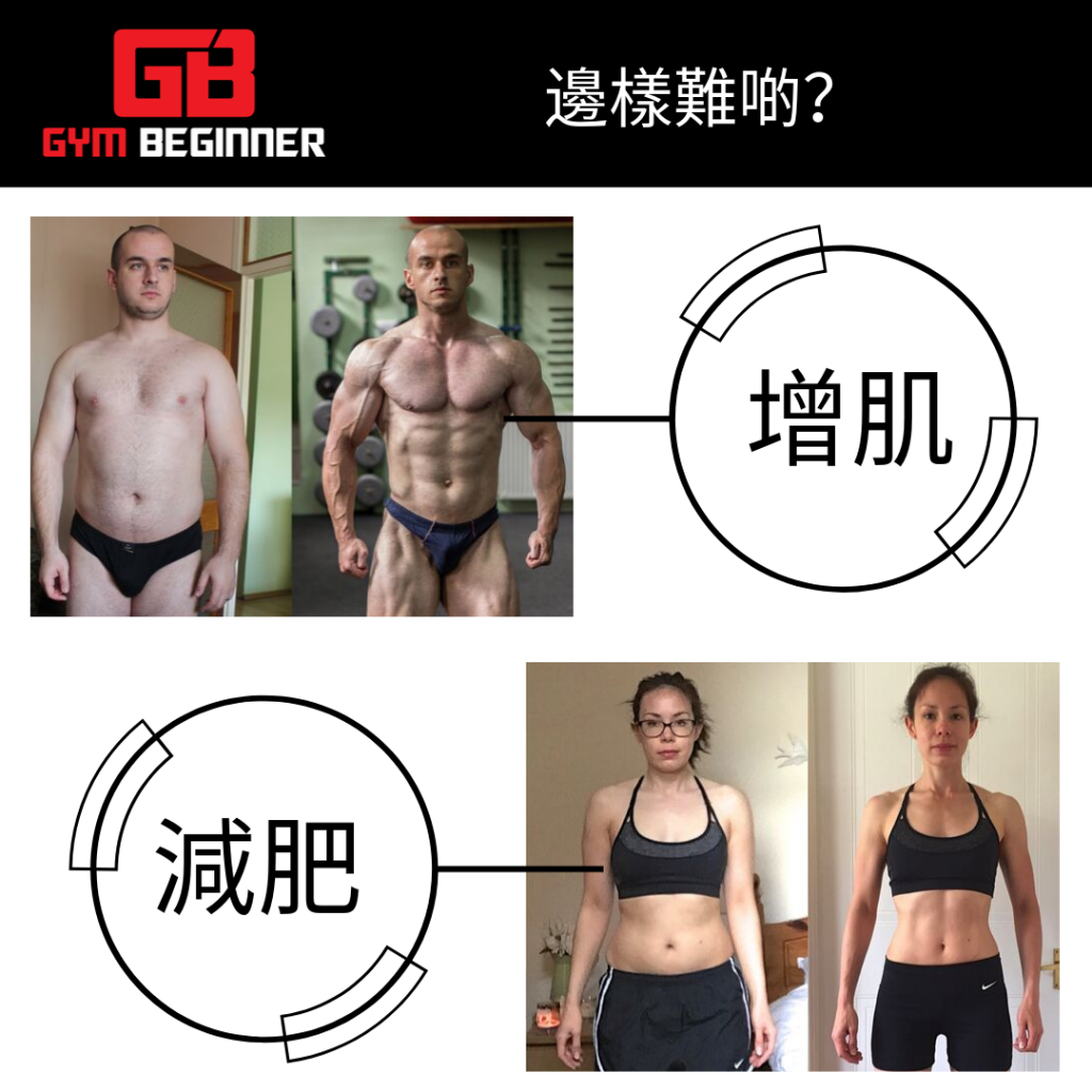 Fat loss or muscle building?